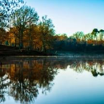 Lac de Luc (Landes)